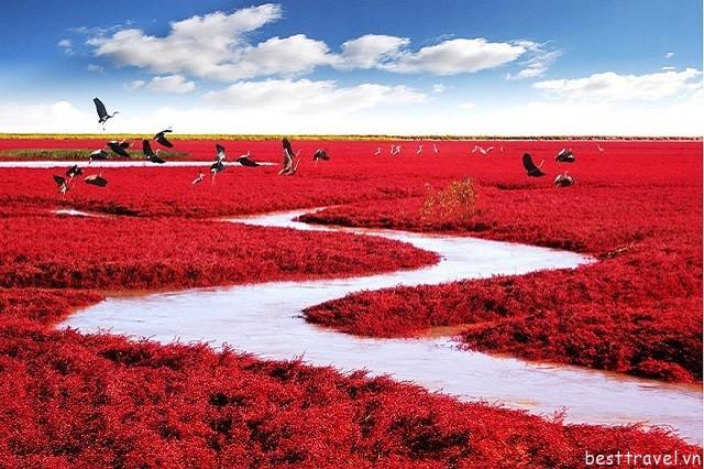 Hình 10 - Biển đỏ có khung cảnh thiên nhiên đẹp lộng lẫy