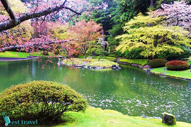 Quang cảnh nên thơ, yên bình ở vườn Nitobe Garden của vườn UBC