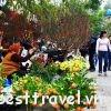 Không khí nhộn nhịp của Chợ Cồn Đà Nẵng ngày tết