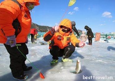 Khám phá lễ hội câu cá hồi trên băng ở Hwacheon, Hàn Quốc