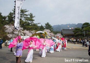 Những sự kiện và lễ hội mùa xuân độc đáo ở Hàn Quốc