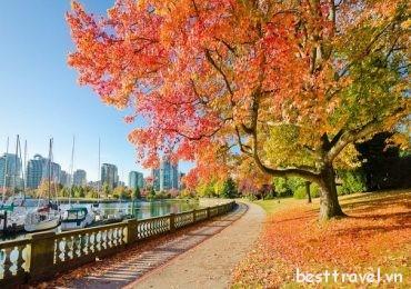 Phiêu du trên những cung đường đẹp nhất ở Canada