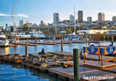 Những trải nghiệm trên cả tuyệt vời ở San Francisco