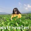 Mách cho bạn những điểm du lịch nổi tiếng ở Quảng Nam