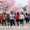 Thiên đường Bảo Sơn – điểm vui chơi lý tưởng vào ngày Tết ở Hà Nội