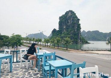 Top 3 điểm sống ảo siêu chất ở Quảng Ninh ngày Tết