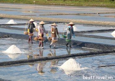 """Du xuân Nha Trang khám phá cánh đồng """"tuyết trắng"""" siêu hot"""