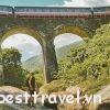 Cầu vòm Đồn Cả – điểm checkin khó bỏ lỡ khi tới Đà Nẵng dịp Tết