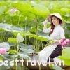 Gợi ý địa điểm săn hoa sen tuyệt đẹp cho chuyến phượt Hà Nội tháng 5