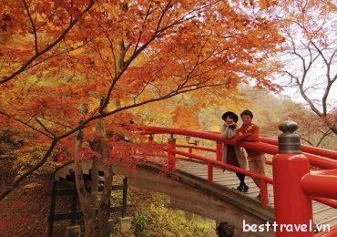 Núi Takao điểm tham quan ở Tokyo nổi tiếng nhất trong mùa thu